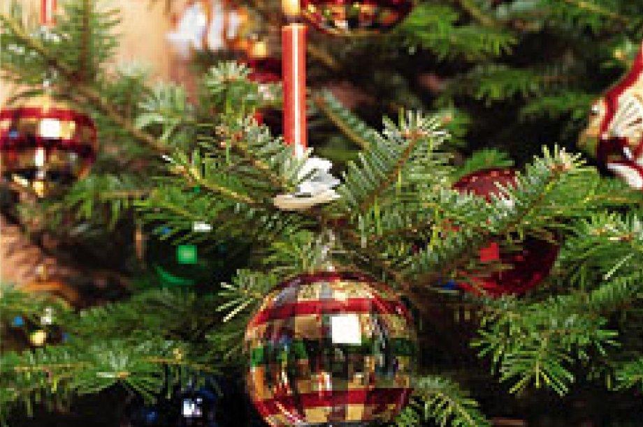 Weihnachten an der Müritz - Arrangements - Ihre traumhaften Ferien ...